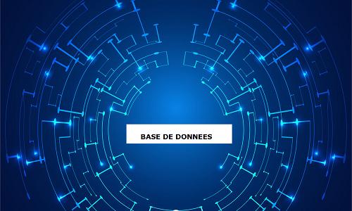 BASES DE DONNEES / JOURNAUX / PRESSE